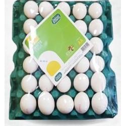سنقرط بيض مائده طبق 30 بيضة حبة كبيره