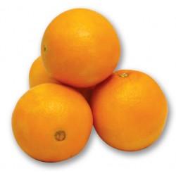 برتقال ابو صرة 1ك
